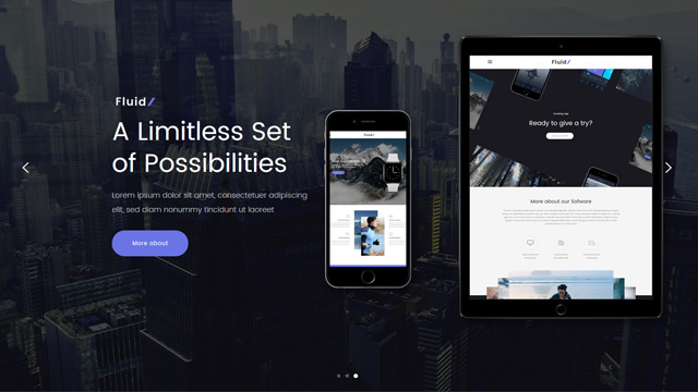 Fluid a WordPress theme for apps 2017